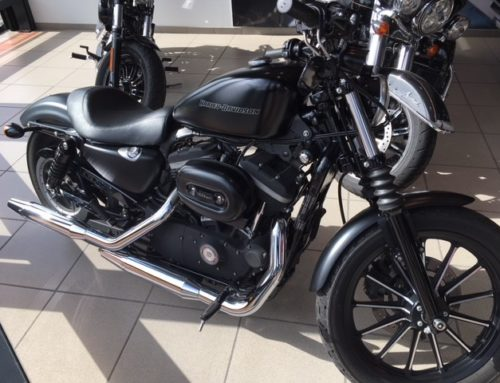 IRON 883N 2010 SPORTSTER Occasion