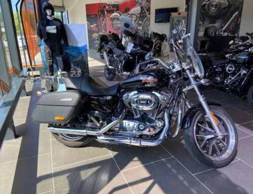 SPORTSTER 1200T – SUPERLOW – 2019 Occasion